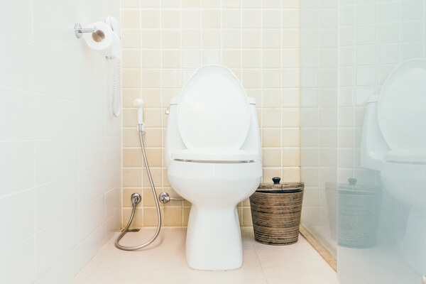 How Low Flow Toilets Affect Your Septic Tank