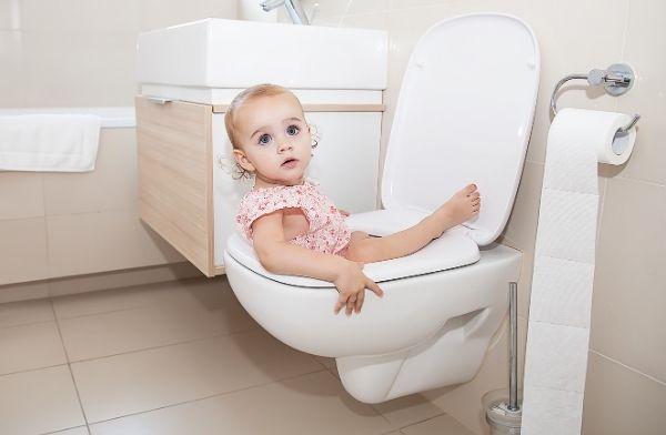 Septic Maxx Toilet blog 1
