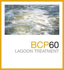 bcp60
